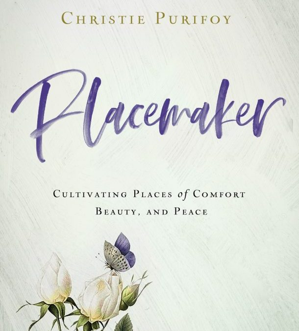 Book Review: Placemaker